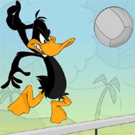 Daffy Duck Volleyball