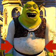 Shrek Contest