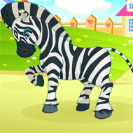 Inimitable Zebra