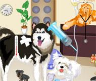 Spitalul animalelor