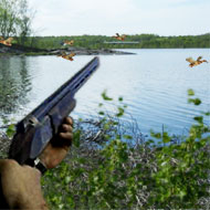 Duck Shooter Hunting