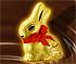 Gold Bunny Hunt