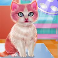 Kitty Dental Caring