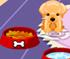 My Sweet Dog 2