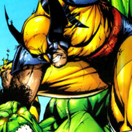 Photo Mess Wolverine vs Hulk